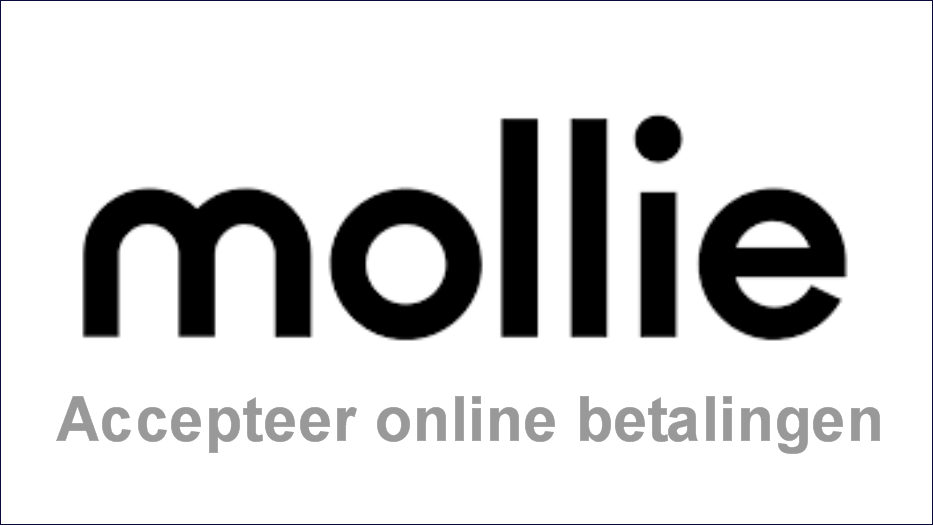 Mollie Frame website logo